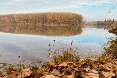 Íme olvasóink legszebb őszi fényképei